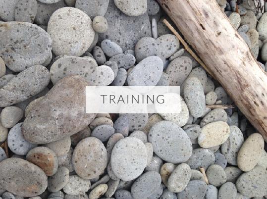 trainingstones